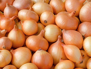simba_product_foods_vegetables_onions_large