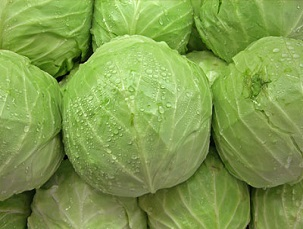 Cabbage ►